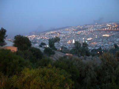 Fez Medina View